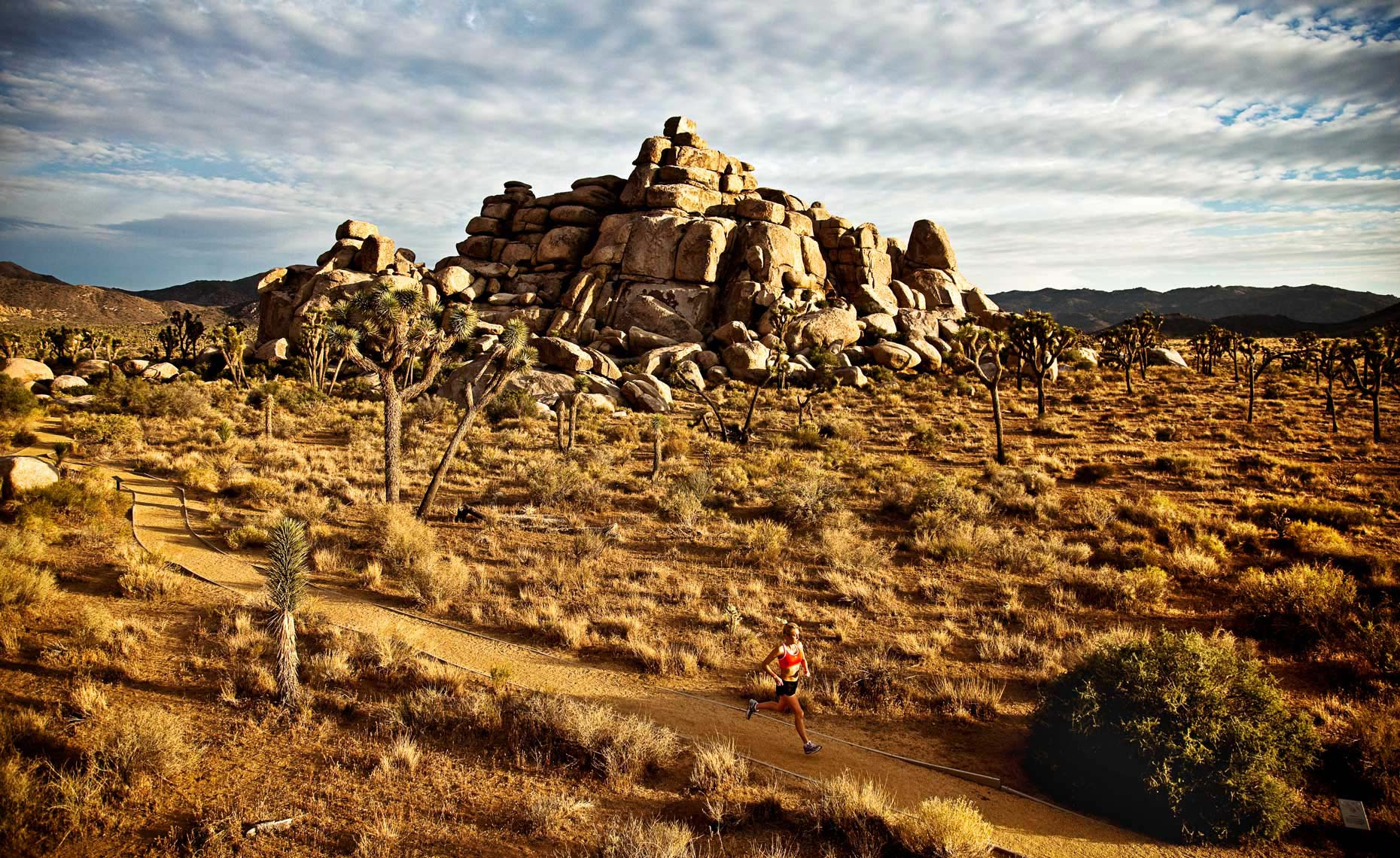 Sports Photographer STEVE BOYLE - Joshua Tree Running