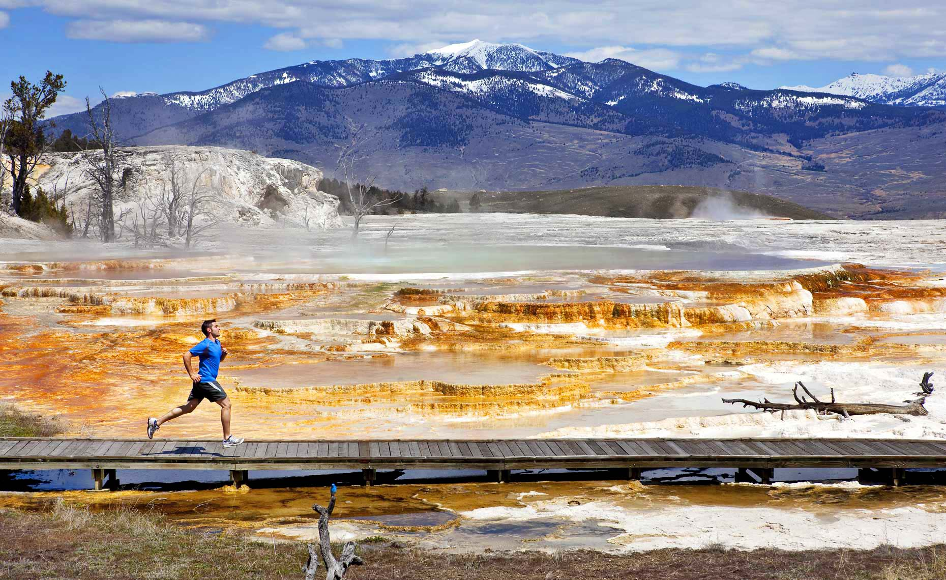 Sports Photographer STEVE BOYLE - Yellowstone National Park Running
