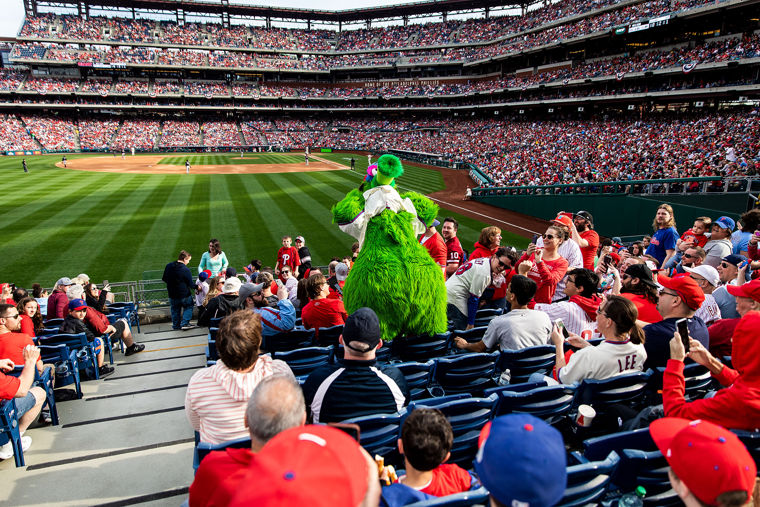 Sports Photographer STEVE BOYLE - Philadelphia Phillies Mascot - The Phillie Phanatic